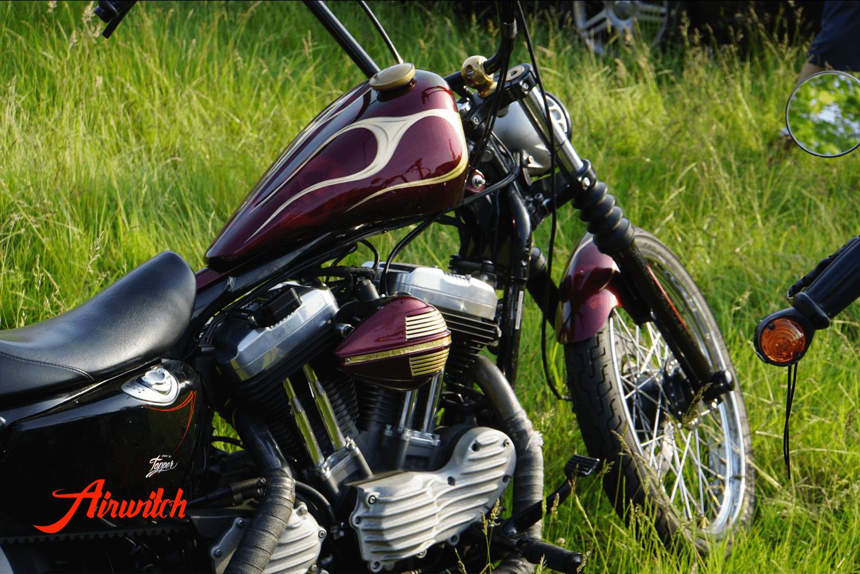 Harley Davidson Sportster Custom Paint Tank Oldschool mit Totenkopf Airbrush und Flammen aus Blattgold in Candyrot von Airwitch