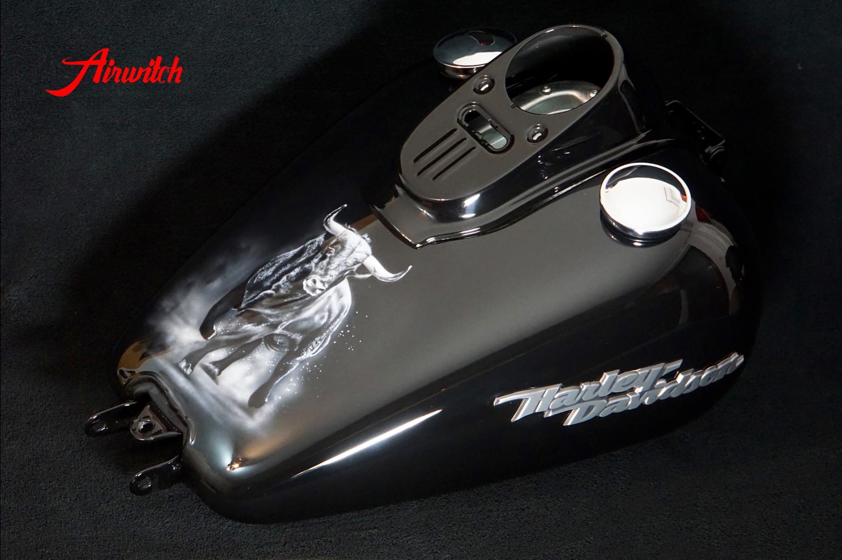 Custom Paint Harley Davidson Dyna Street Bob Airbrush Stier